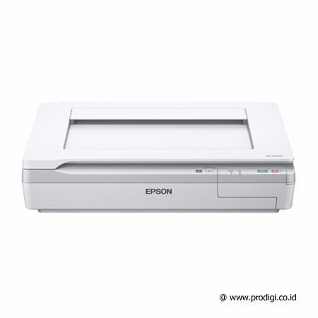 Epson Scanner DS-50000 (A3+)